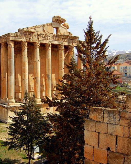 O Templo de Baco de Baalbek é frequentemente descrito como o templo mais... (Baalbeck, Béqaa, Lebanon)