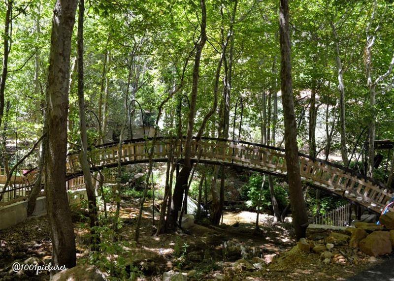 discover lebanon travelphotography nature nature_shooters nikon ... (Tannurin At Tahta, Liban-Nord, Lebanon)