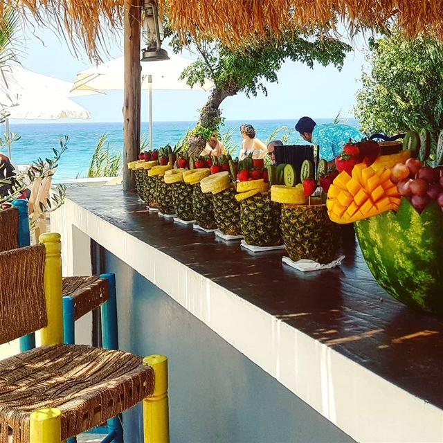 Tropical vibes at the mediterranean sea... lazyB sundayvibes ... (Lazy B)