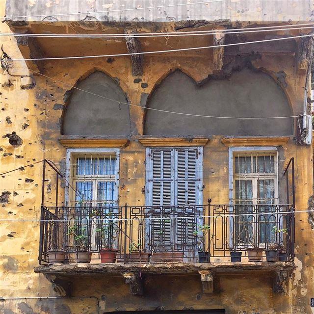 makes my heart sad 🌱•• ihavethisthingwithbeirut passionpassport ... (Beirut, Lebanon)