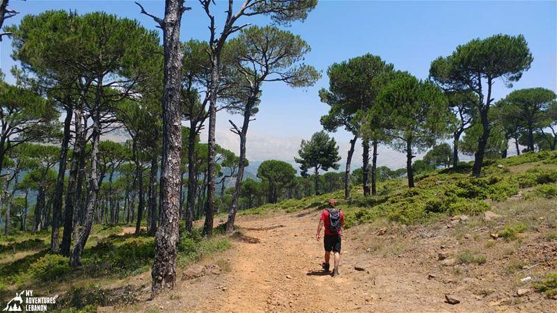 Join us this Saturday:Hike in Wadi el Salib -KfardebyanLevel: easy/3hrs/8