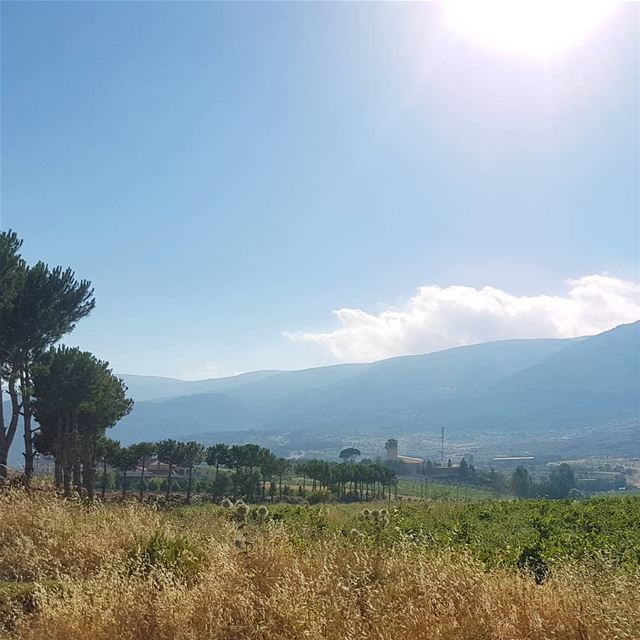 Some sunshine won't hurt ig_respect  instaamici  wearelebanon ... (West Bekaa)