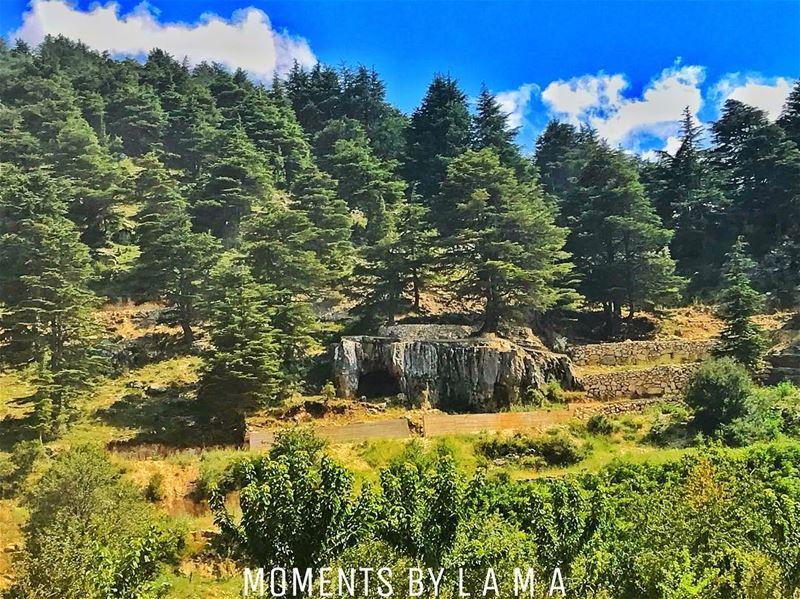 landscapephotography landscape naturephotography nature ig_lebanon... (Miniyeh-Danniyeh District)