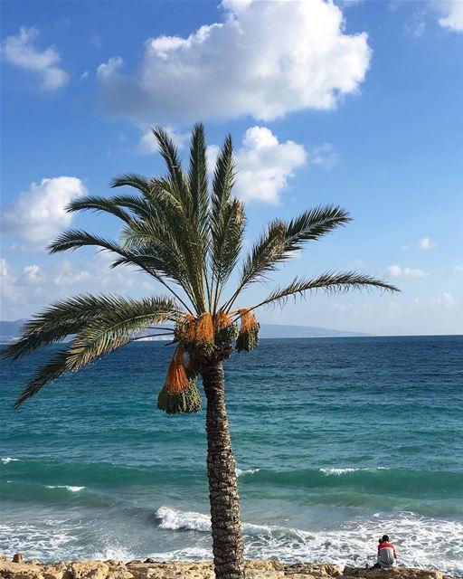 شايف البحر شو كبير...؟ ______________________________________ Tyre Sour ... (Tyre, Lebanon)