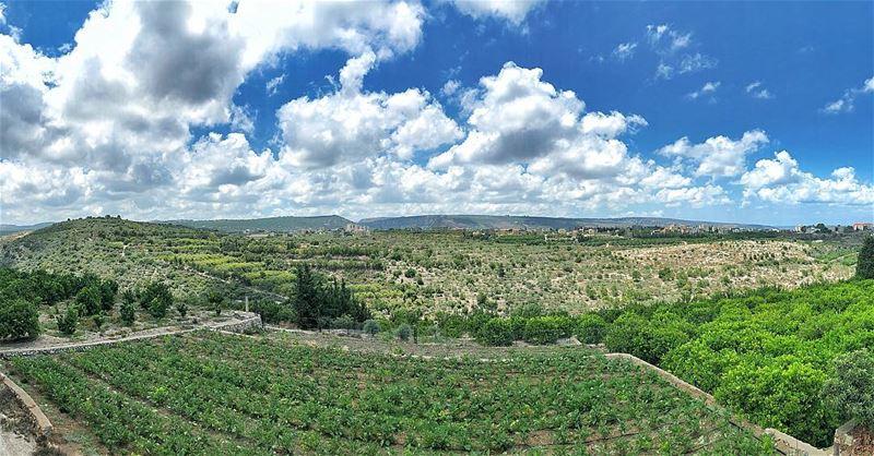 tyr sour relax lebanon livelovelebanon explorelebanon livelovesour ... (Tyre, Lebanon)