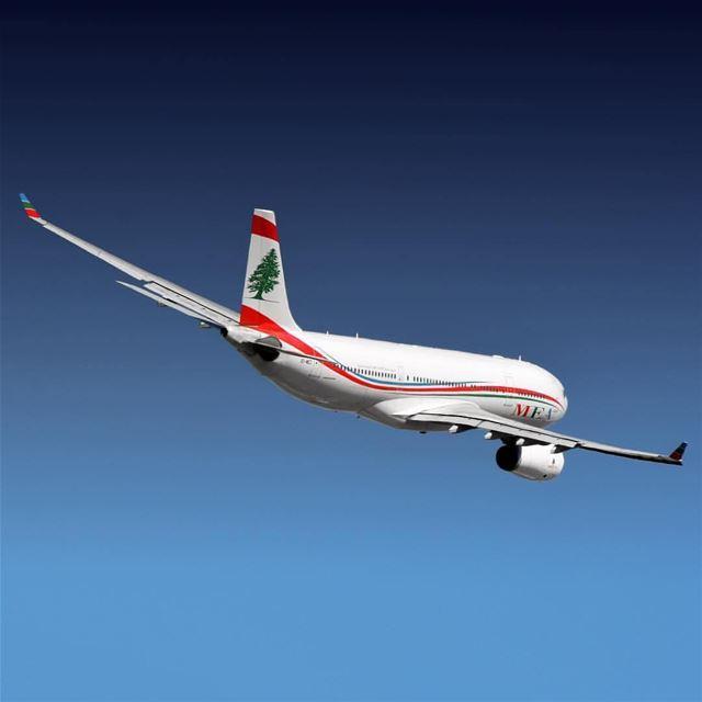 As melhores companhias aéreas do Oriente Médio foram reveladas no Traveler'