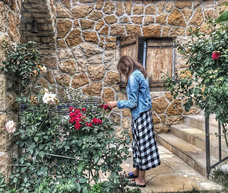 Stop and smell the roses 🌹.. flowers instalebanon livelovebeirut ... (Lebanon)