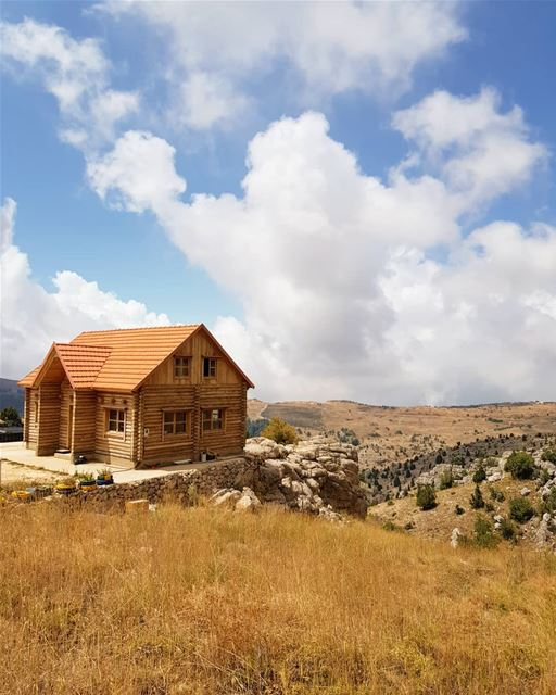 House upon the hill🏠.. livelovetannourine mountain woods cedars beauty... (Arz Tannoûrîne)