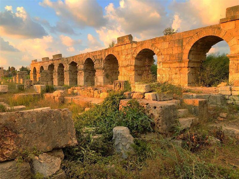 بكرا شي نهار 🌼 tyre jnoub livelovehistory historicalplace ... (Tyre, Lebanon)
