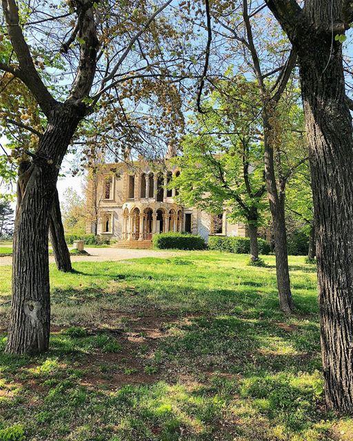 lebanon castle ig_captures ig_today instagood wanderlust travelgram... (Sawfar, Mont-Liban, Lebanon)