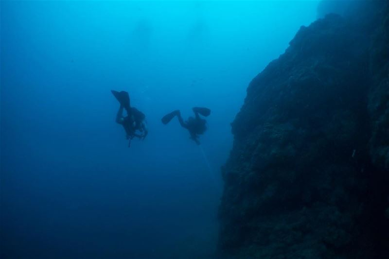 Reef & fins... from the buttom of the AUB Wall... beirut lebanon diving...