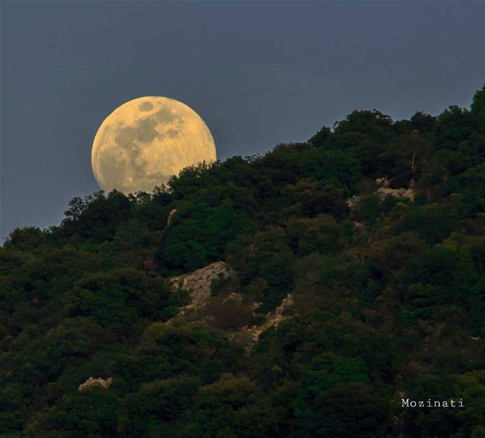 نحنا والقمر جيران بيته خلف تلالنابيطلع من قبالنا يسمع الألحاننحنا والقمر... (Mlîkh, Al Janub, Lebanon)