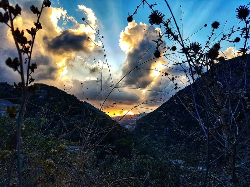 Somewhere in the valley sunset  sunset_vision  sunset_lovers  sunsetsky ... (Abou Mîzâne, Mont-Liban, Lebanon)