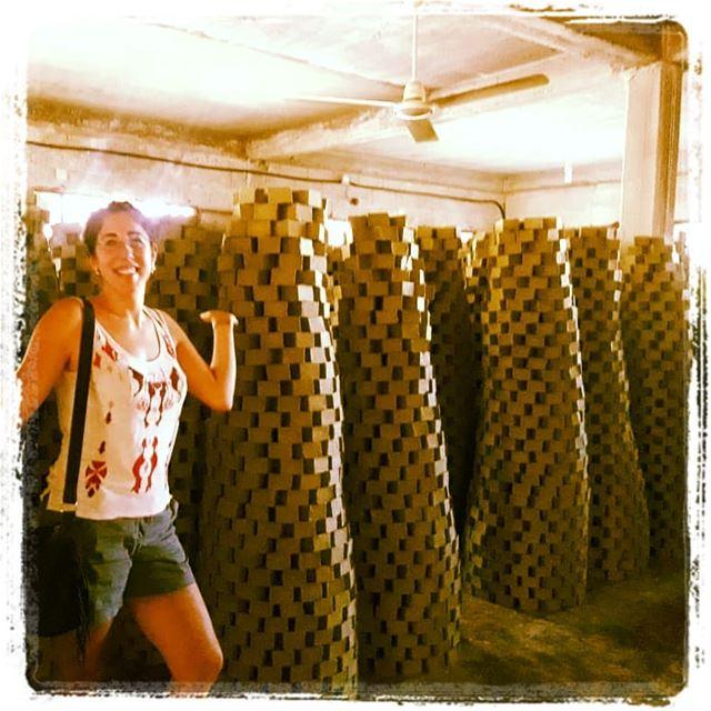 Visit the soap factory of saifan lebanontimes lebanonspotlights ... (Amioûn, Liban-Nord, Lebanon)