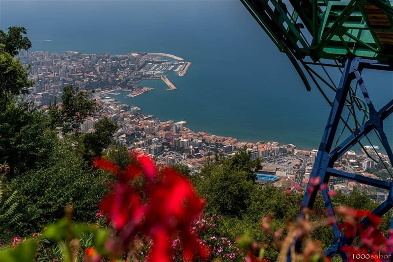 Summer in  Lebanon, from Harissa. Inlove with that sightJe kiffe ce... (Harîssa, Mont-Liban, Lebanon)