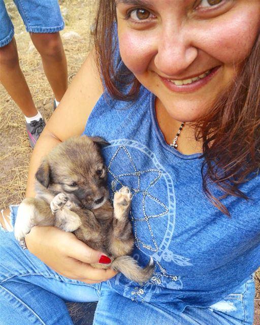 Athena 🐶.Huawei P20 📸. Puppy PuppyLove Puppys Puppies ... (Mtein)