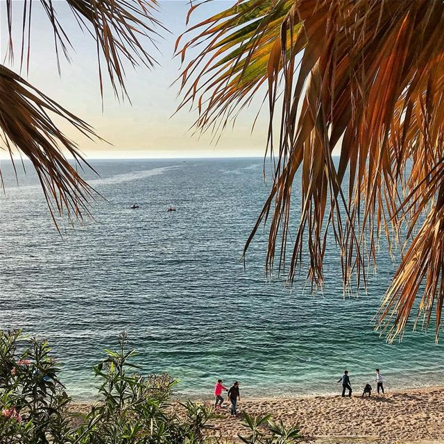 beach sun sand trees fun sky photooftheday picoftheday igdaily ... (Byblos, Lebanon)