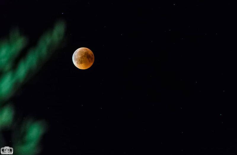 moon eclipse from houmine al fawka moon bloodmoon blood eclipse ...