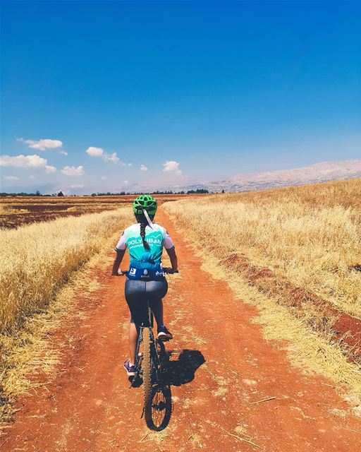 Yellow fields 🚵‍♂️. cycling lebanon bekaa offroad...