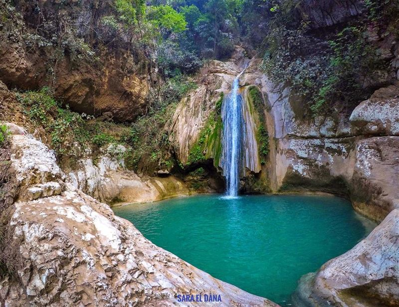 I promised you that you'll see something as beautiful as you are 💦 (Lebanon)