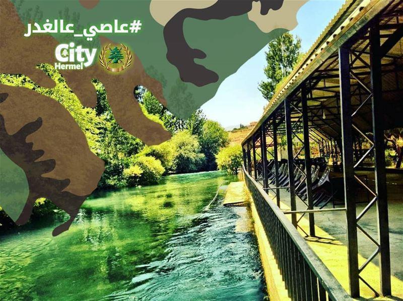 عاصي_عالغدر ... كل عام وانت بخير تحية لتضحياتك من نهر العاصي assi_river... (El Hermel, Béqaa, Lebanon)