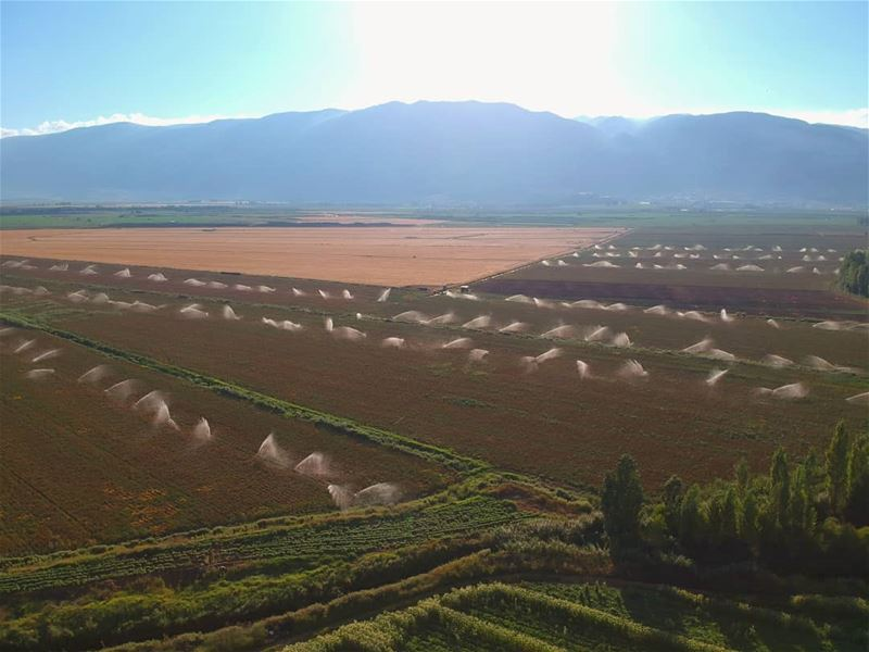 irrigation agriculture_global agriculture water landscape greenland bekaa... (West Bekaa)