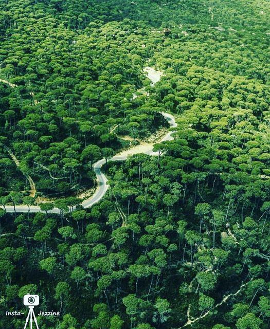 blassine jezzine @libano_brasil lebanon livelovelebanon nature...