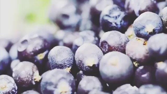 Você sabia que no Líbano também existe produção de gin (bebida destilada à... (Rechmaya)