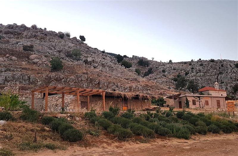 bekaa whatsuplebanon eyesoflebanon meetlebanon bekaavalley ... (`Ammiq, Béqaa, Lebanon)