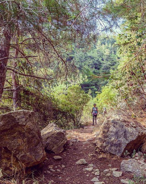 ____________________________________________________ treehugger961 ... (Baakline, Mont-Liban, Lebanon)