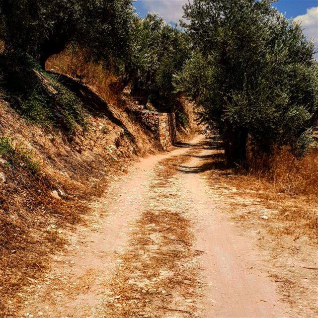 الطريق التي تؤدي الى بقايا منزل مريم اخت اليصابات والقديسة حنة وخالة العذرا (Kawkaba)
