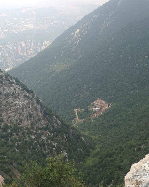 صدر عن جمعية حماية جبل موسى البيان التاليتشكر جمعية حماية جبل موسى جميع من (Jabal Moussa Biosphere Reserve)