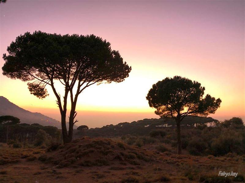 ________________________________________ sunset libanon chbanieh... (Chbânîyé, Mont-Liban, Lebanon)