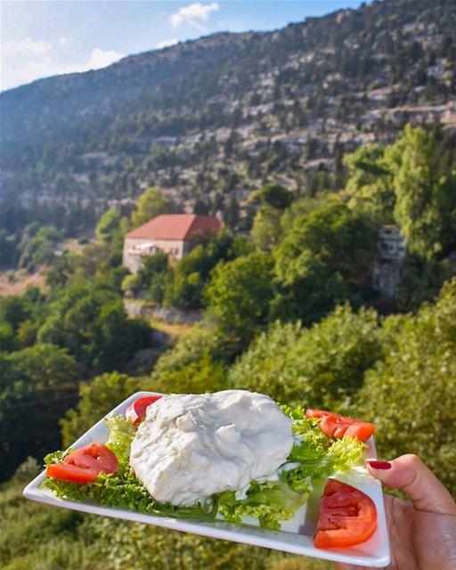 هيدي الجبنة الضرفيّةمن إيد رينا أحلى صبيّةبأعلى الجبال الإهدنيّةبتتحضَّر (Al-Ferdaws)