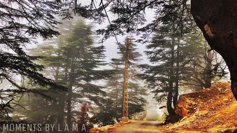 landscape landscapephotography nature naturephotography naturelovers... (جبل الاربعين)