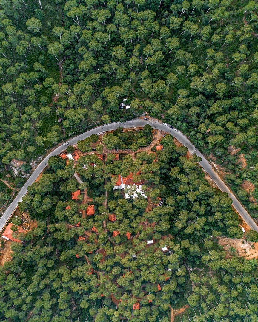 Flying over Bkassine forest 🌳... lebanon jezzine bkassine dji ... (Bkâssîne, Al Janub, Lebanon)