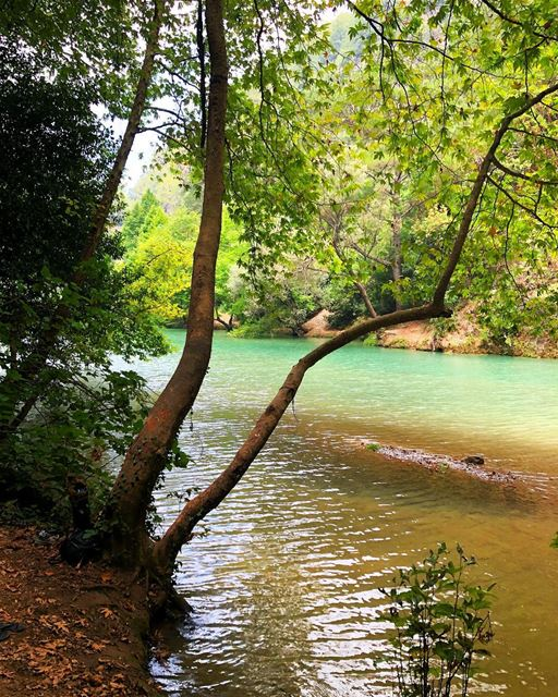 Exest to be happy not to impress 💚🧡 lebanon  lake  amazingplace ... (Chouène, Mont-Liban, Lebanon)