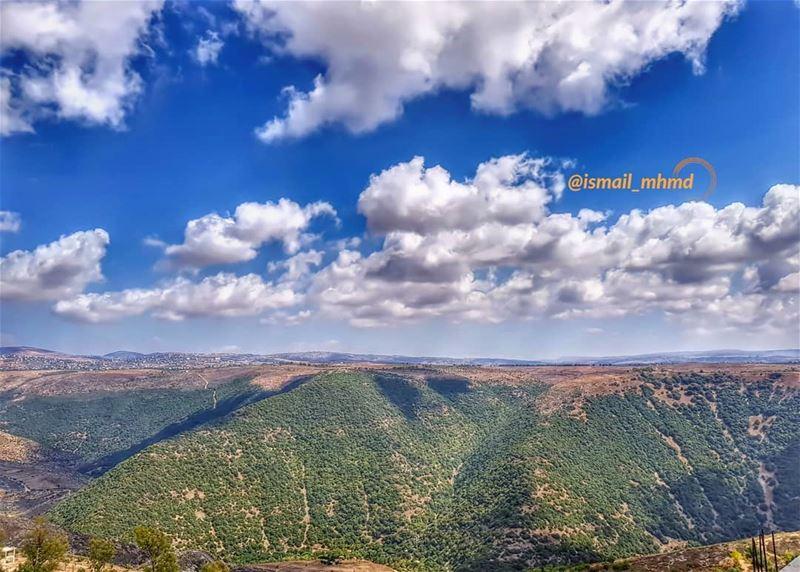 ~~☆☆ 📸1807291513 ☆☆~~ (Zawtar Ash Sharqiyah, Al Janub, Lebanon)