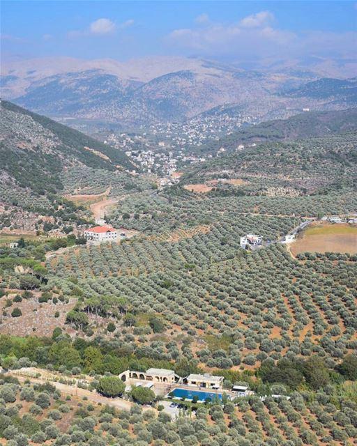 يا جبل الشيخ يا قصر النديوحبيبي بكير لعندك غدي يا جبل الشيخ ربّاك الهواو (Hasbaya)