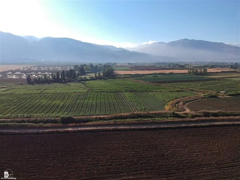 combination land greenland greenfield irrigation bekaa bekaavalley... (Bekaa Valley)