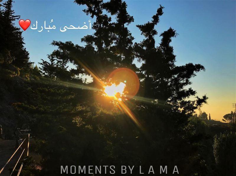 أضحى مُبارك ❤️ LAMA_YOUSSEF... (Miniyeh-Danniyeh District)