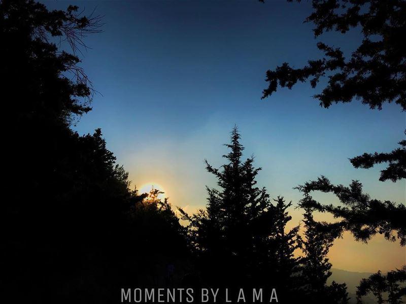 landscape landscapephotography nature naturephotography sunset ... (Miniyeh-Danniyeh District)