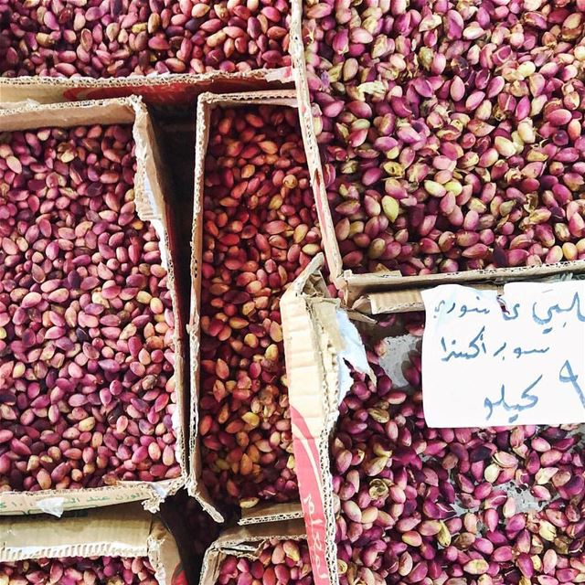 Super Fresh!📸 @paayoubl lebanon fresh superfresh pistachios yummy...