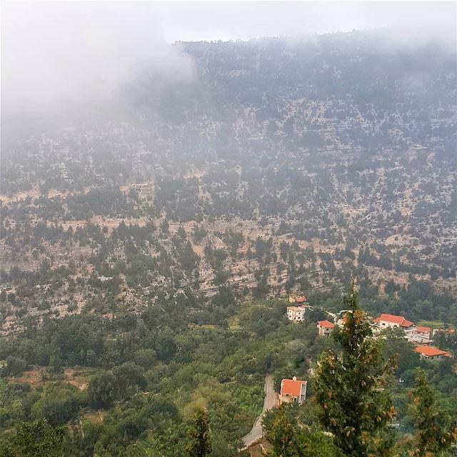 Above the clouds 💚🏡 (Bouhaïret Toûla, Liban-Nord, Lebanon)