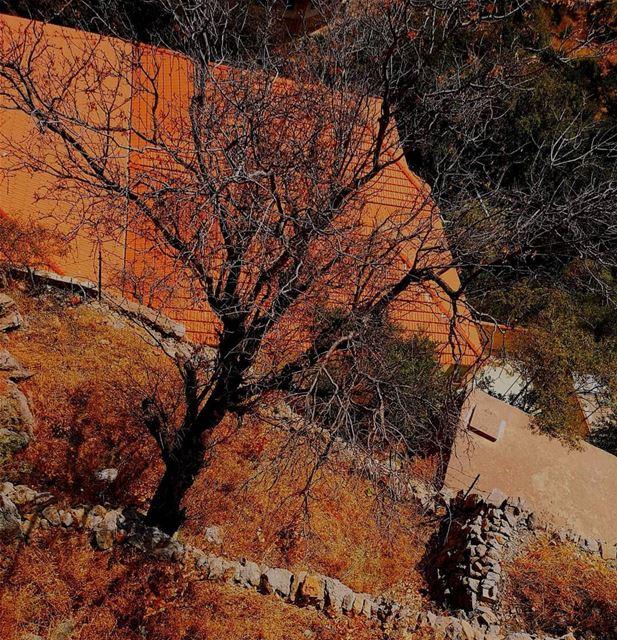 nostalgia oldhouse redbrick summer... (Chebaâ, Al Janub, Lebanon)