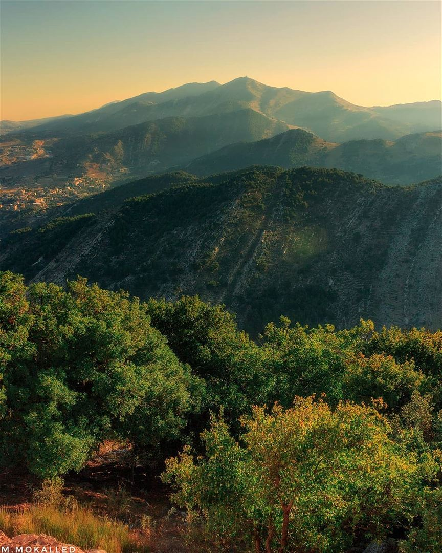 Greeny mood from yesterday morning 😍Niha mountain 🗻🌄ISO 100, f11, 1/50 (`Aramtá, Al Janub, Lebanon)