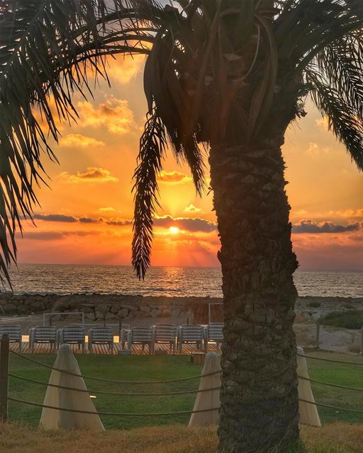 Sunset @damourbeach .... lebanon lebanon🇱🇧 lebanonspotlights ...
