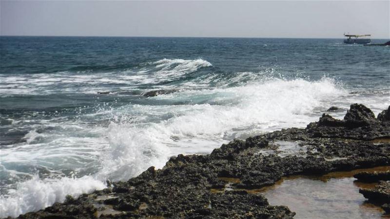 The Sea 🌊 where I love to be 💙... Beach Island RabbitsIsland ... (Palm Island. Tripoli in)