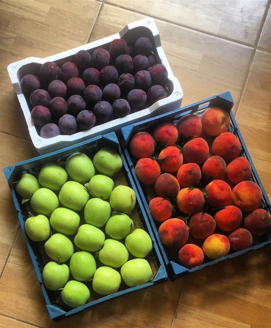 Amazing colors 🌈 lebanonfruits colorfull ❤️🌲❤️ beautiful lebanon ...