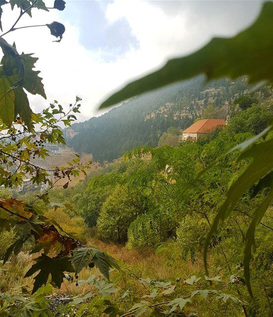 رغم كل شيء نقوله أو نكتبه ، يبقى في القلب أشياء أكبر من أن تقال. - محمود در (Ehden, Lebanon)